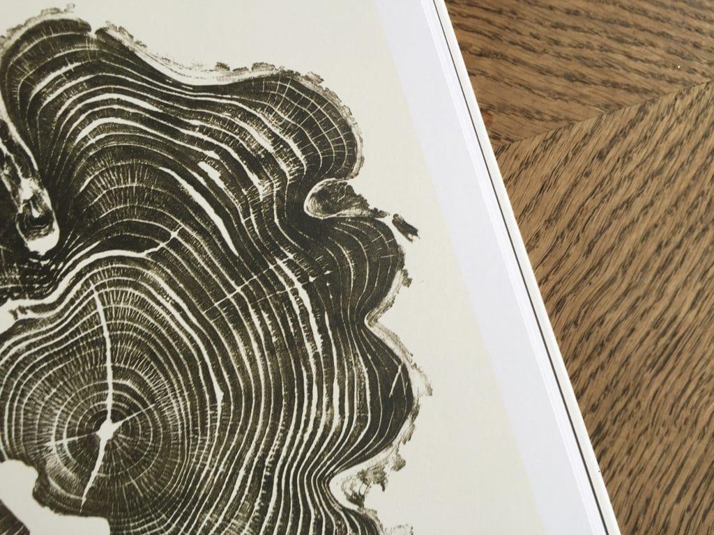 woodcut-bryannashgill-009LR